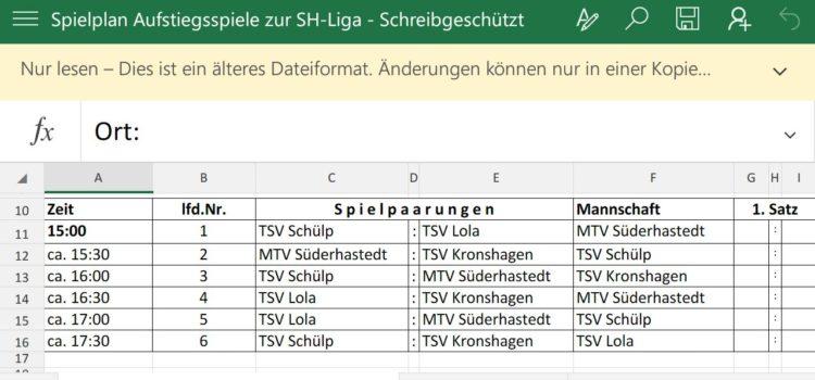 SH-Liga Aufstiegsspiele in Nortorf